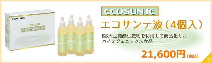 エコサンテ液(4個入)